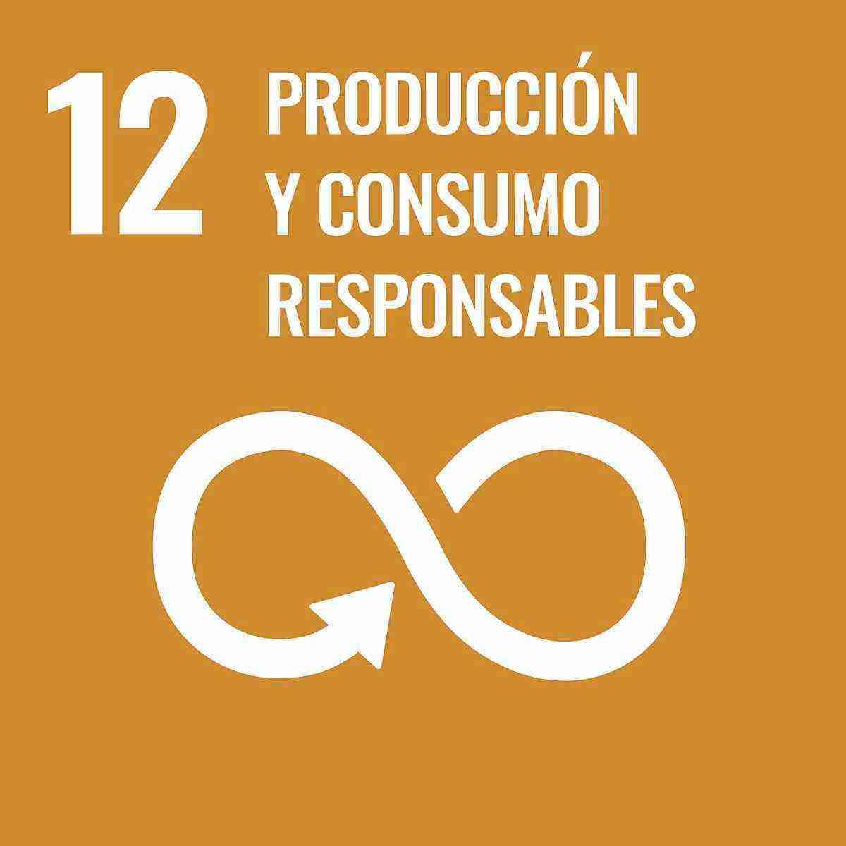 objetivo sostenible